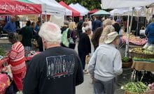 Saturday Market Salt Spring Island