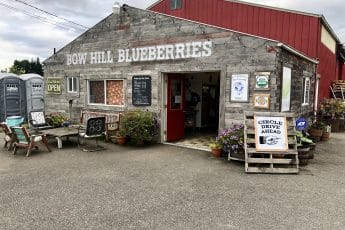 Bow Hill Blueberries Bow WA