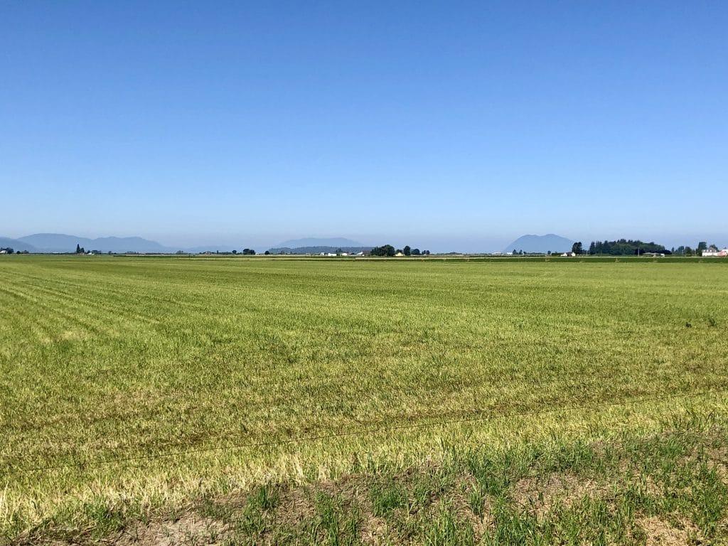 Harmony Fields Vista