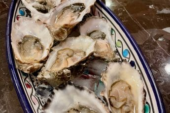 Little Otter Shellfish Oysters